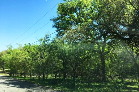 Buy Land in San Marcos, TX