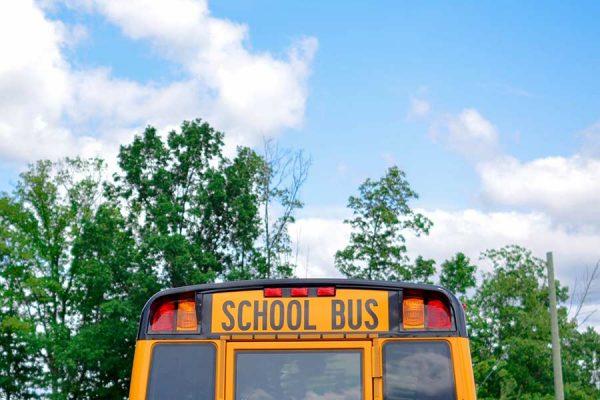 Rear view of a school bus
